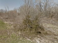 9.35 Acres- Madison, Il 62060 : Madison : Madison County : Illinois