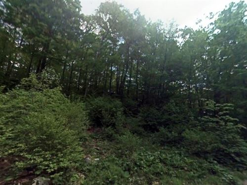 3.10 Acres- Pawling, Ny 12564 : Pawling : Dutchess County : New York