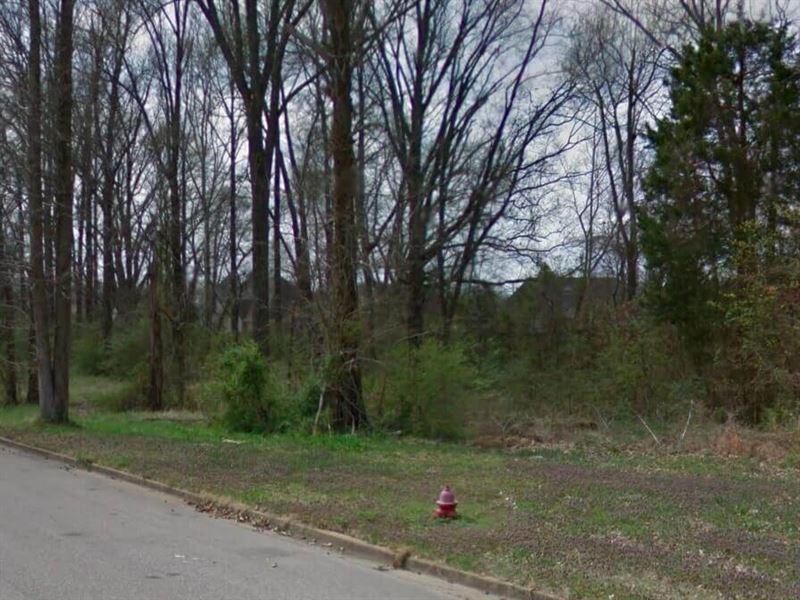 3.08 Acres- Olive Branch, Ms 38654 : Olive Branch : De Soto County : Mississippi