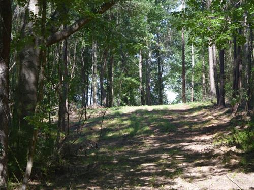 10 Wooded Acres In Walthall County : Tylertown : Walthall County : Mississippi