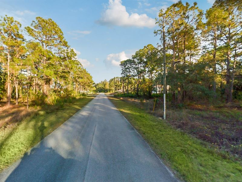 .5 Acres In Lehigh Acres, FL : Lehigh Acres : Lee County : Florida