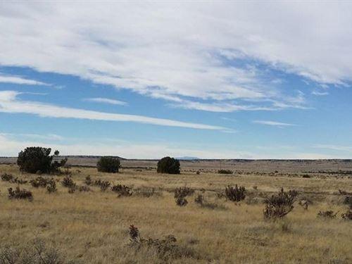 37 Acres In Thatcher Pinon Canyon, Co : Thatcher Pinon Canyon : Las Animas County : Colorado