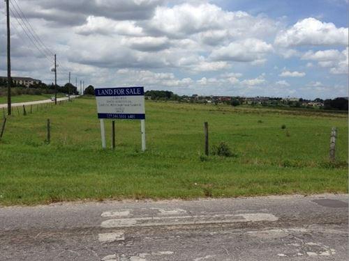 12 Acres In Zephyrhills, Fl : Zephyrhills : Pasco County : Florida