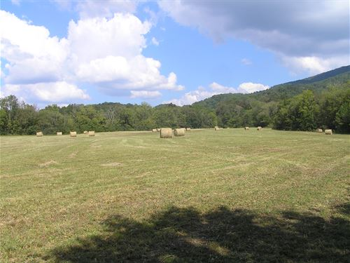 24 Acres, Meadow, Woods, Creek : Pikeville : Bledsoe County : Tennessee