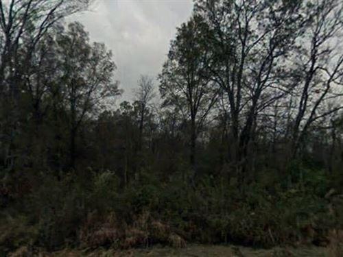 .25 Acres- Brinkley, Ar 72021 : Brinkley : Monroe County : Arkansas
