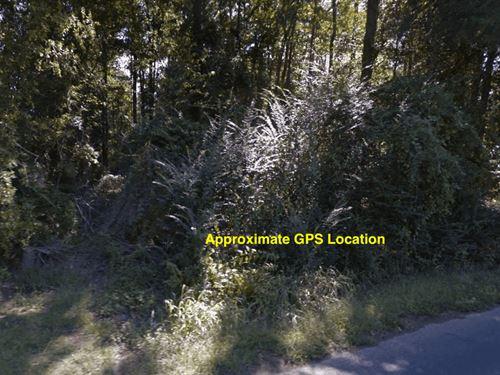 .58 Acre- Fouke, Ar 71837 : Fouke : Miller County : Arkansas