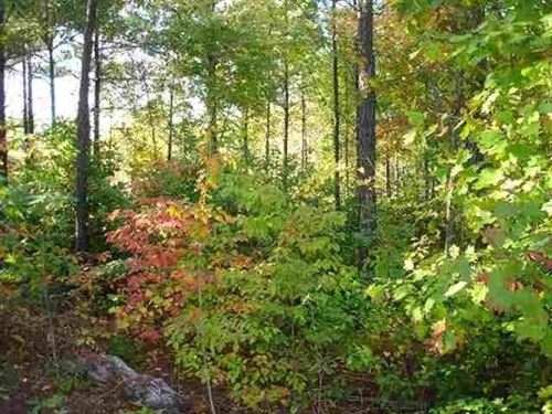 1.16 Acres- Hot Springs Village, Ar : Hot Springs Village : Garland County : Arkansas