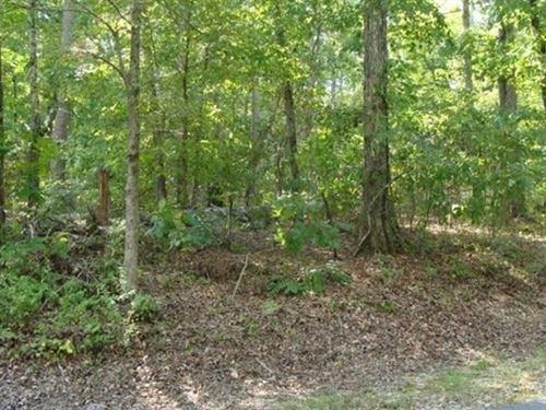 1.14 Acres- Hot Springs Village, Ar : Hot Springs Village : Garland County : Arkansas