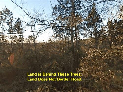 1.29 Acres- Norman, Ar 71960 : Norman : Montgomery County : Arkansas