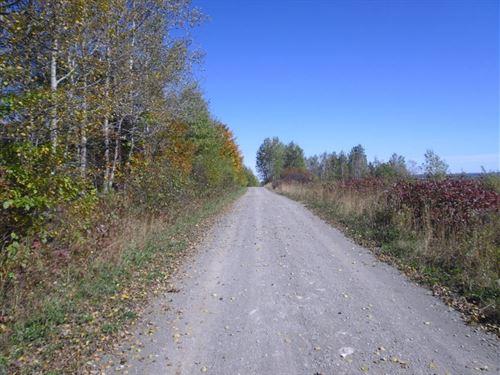 64 Acres In Van Buren, ME : Van Buren : Aroostook County : Maine