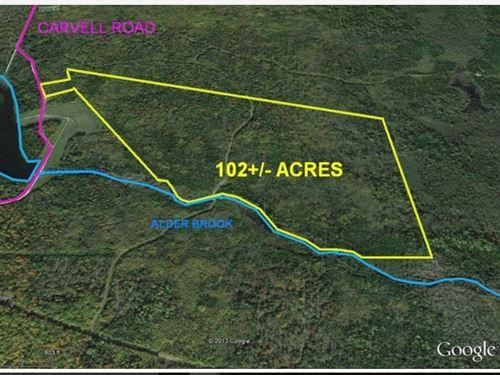 102 Acres For Sale In Chapman, Me : Chapman : Aroostook County : Maine