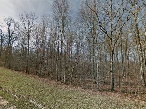 1.02 Acres In Crossville, Tn : Crossville : Cumberland County : Tennessee