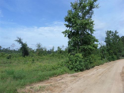 Recreational Tract On Little Creek : Jesup : Wayne County : Georgia