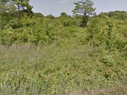 .42 Acres- Altheimer, Ar 72004 : Altheimer : Jefferson County : Arkansas