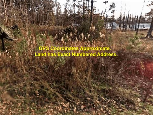 .16 Acres- Carthage, Ar 71725 : Carthage : Dallas County : Arkansas