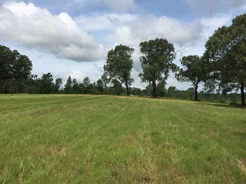Ward, Arkansas Homesite, Farm, Hay : Austin : Lonoke County : Arkansas