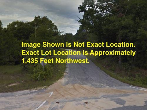 2.64 Acres- Cheraw, Sc 29520 : Cheraw : Chesterfield County : South Carolina