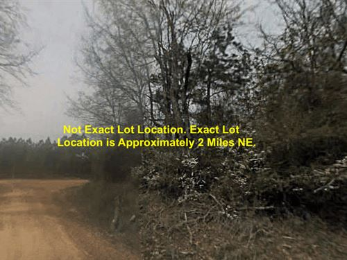 2.05 Acres- Durant, Ms 39063 : Durant : Holmes County : Mississippi