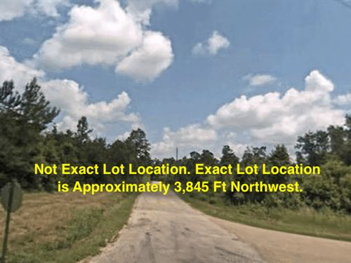 1.99 Acres- Columbia, Ms 39429 : Columbia : Marion County : Mississippi