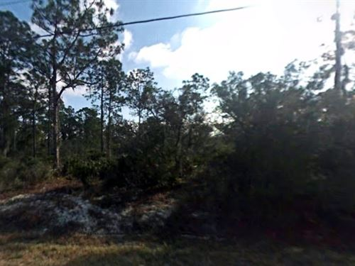 2 Acres For Sale In Sebring, Fl : Sebring : Highlands County : Florida