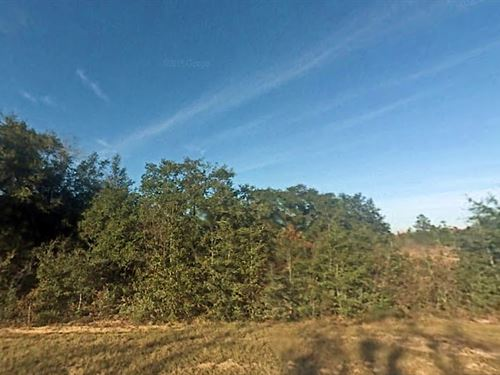 2.7 Acres For Sale In Chipley, Fl : Chipley : Washington County : Florida