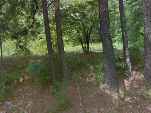 Nacogdoches County, Tx $10,000 Neg : Nacogdoches : Texas
