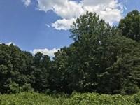 5.64 +/- Wooded Acres, Cherokee Co : Waleska : Cherokee County : Georgia