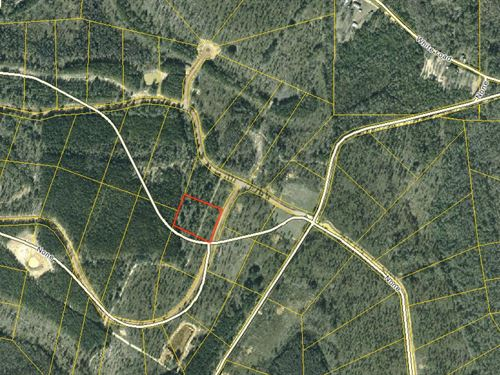 2.53 Acres In Westville, fl : Westville : Holmes County : Florida