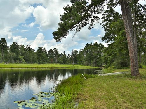 124 Ac Weekend Retreat With Cabin : Bedias : Walker County : Texas