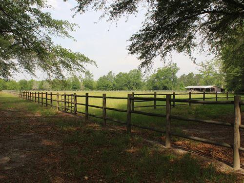 McMillan Tree Farm Tract 5 : Ehrhardt : Bamberg County : South Carolina