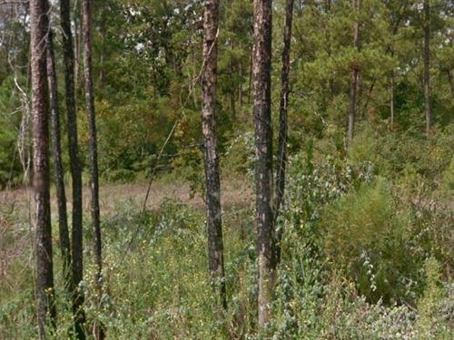 Grimes County, Tx $15,000 Neg : Plantersville : Grimes County : Texas