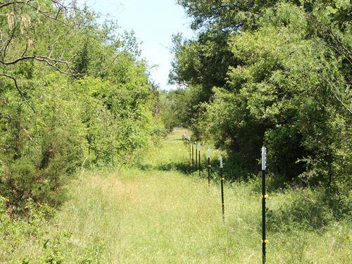 Secluded Estate Site : Hico : Hamilton County : Texas