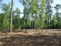 10 Acre Home Site Near Lake : Lizella : Bibb County : Georgia