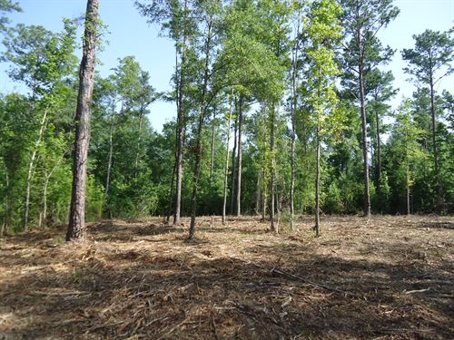 10 Acre Home Site Near Lake : Lizella : Bibb County : Georgia