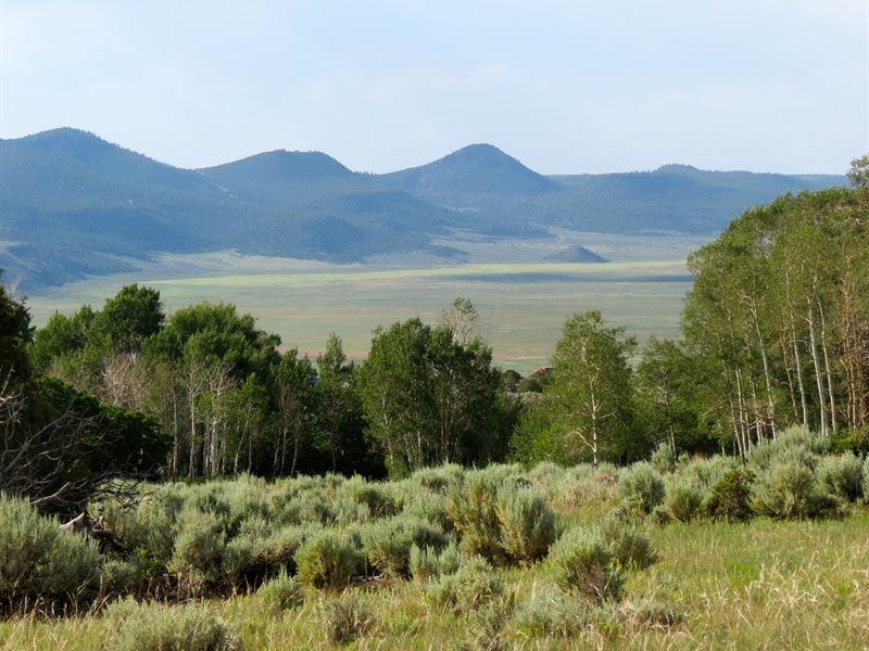 Hidden Jewel Lodge & Property : Amalia : Taos County : New Mexico