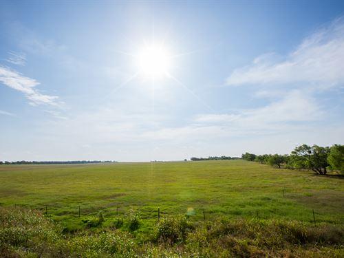 Beef Production Ranch : Dublin : Comanche County : Texas