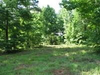 Beautiful Waterfront Lot : Camden : Wilcox County : Alabama