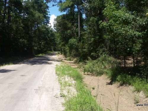 2.6 Ac - Wooded Home Site Tract : Jasper : Texas