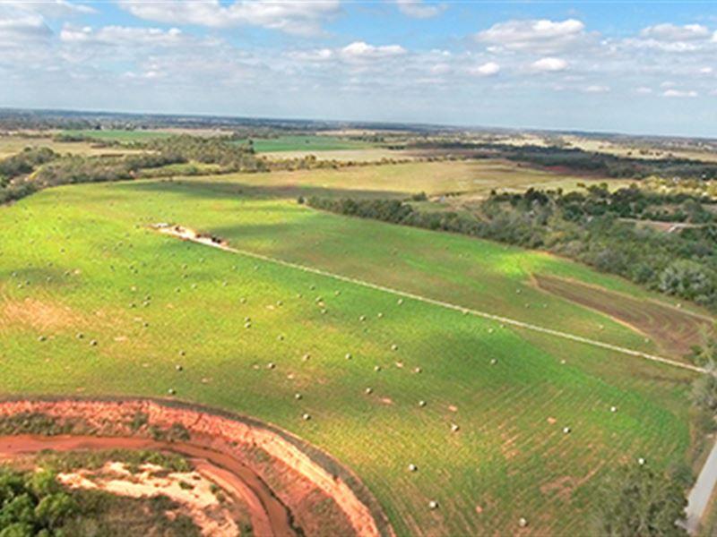Farmland Auction : Washington : McClain County : Oklahoma