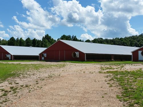 3 House Broiler Farm : Bowdon : Carroll County : Georgia