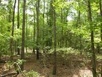 275+- Acres Wooded : Keysville : Burke County : Georgia