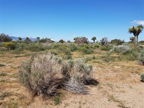 Vacant Lot With Great Desert Views : Baldy Mesa : San Bernardino County : California