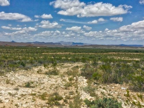 Tract 906 40 Acres In Terlingua Ra : Terlingua : Brewster County : Texas