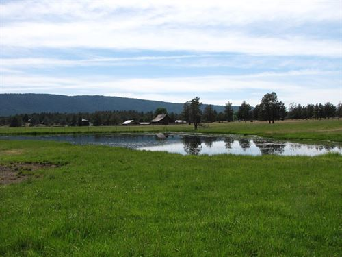 Family Cattle Ranch : Bonanza : Klamath County : Oregon