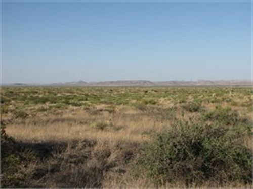 Off The Grid Desert Paradise : Van Horn : Culberson County : Texas