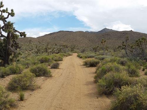 Serene Desert Location : Dolan Springs : Mohave County : Arizona
