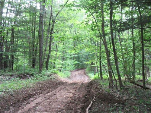 83 Acres Near Redfield Reservoir : Williamstown : Oswego County : New York