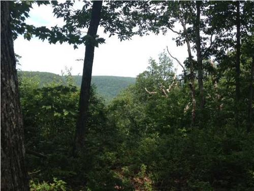 7.8+/-Acres Wooded Bluff Lot : South Pittsburg : Marion County : Tennessee