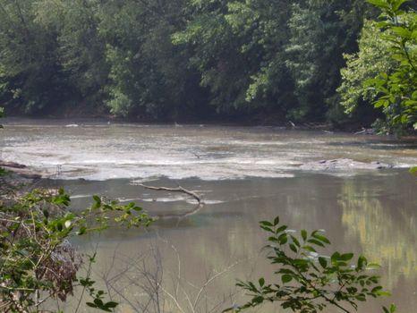 South River Shoals : Covington : Newton County : Georgia