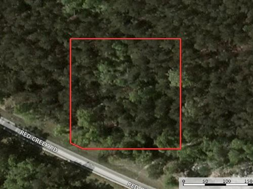1 Acre Home Site For Sale Desoto Na : Carnes : Forrest County : Mississippi